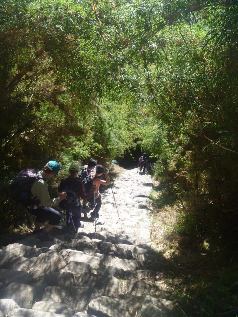 Inca Trail Stairs, Gringo Killers, walking poles