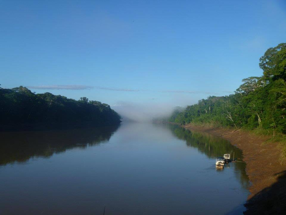 tambopata early morning mist