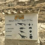 dinosaur footprints guide cal rock Bolivia