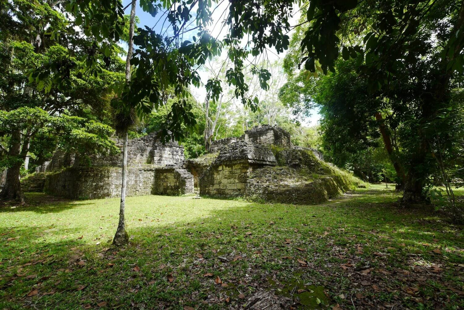 jungle ruins Tikal